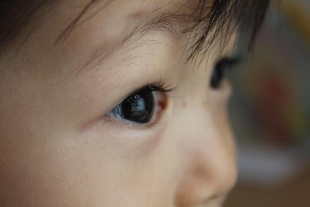 目で見る子ども